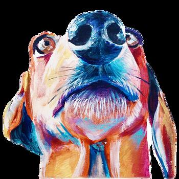 dachshund_edited_edited_edited.png