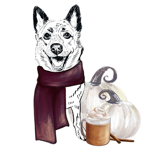 ADD ON: Pumpkin Spice and Everything Nice- No Background