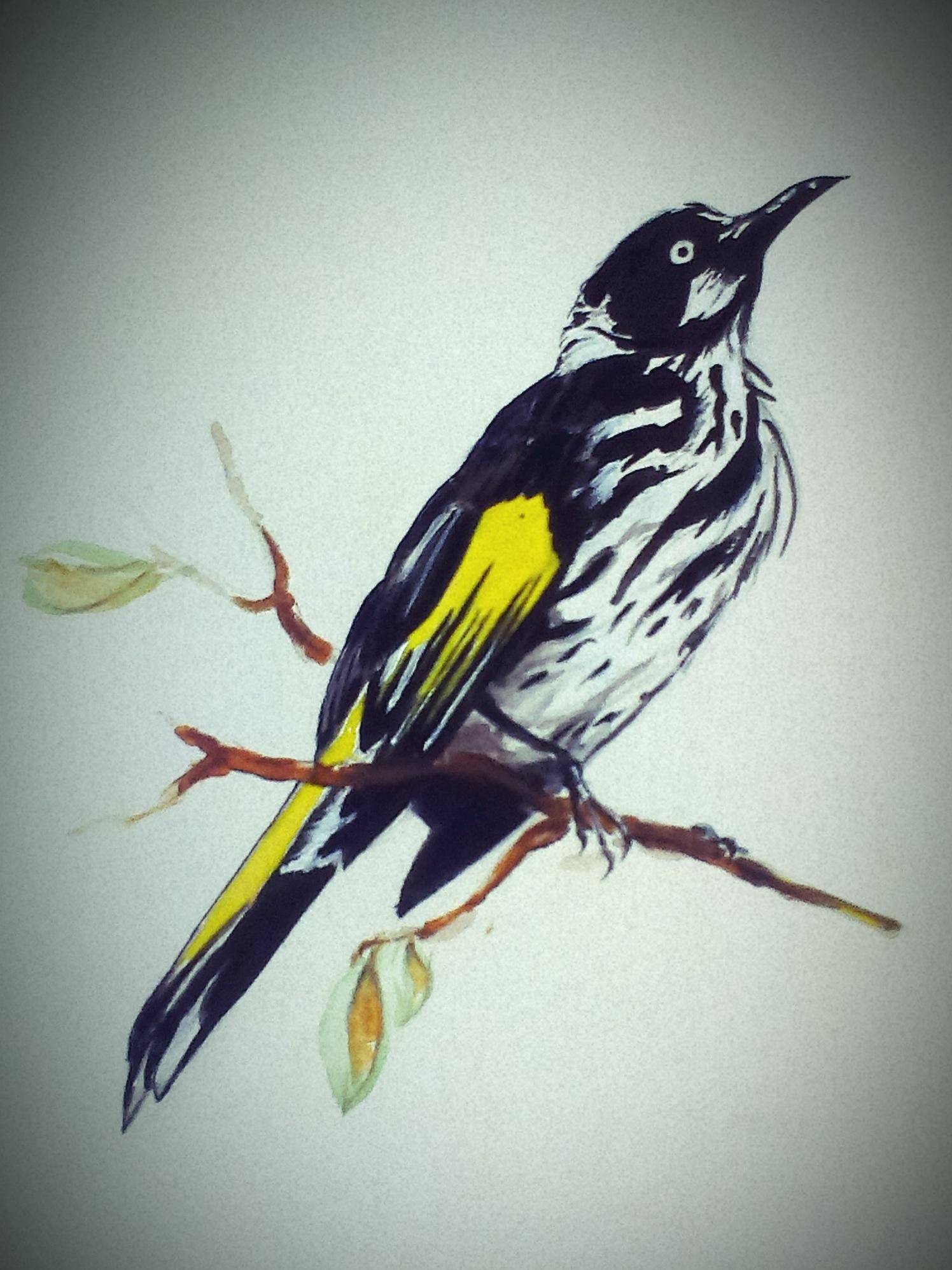 Birds #16