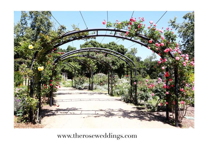 Vendor Spotlight: Descanso Gardens