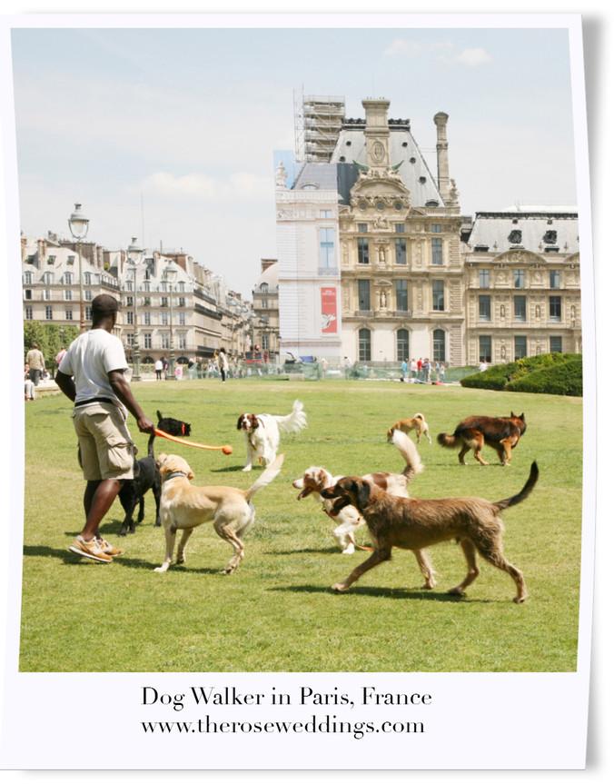 Dog Walker in Paris, France