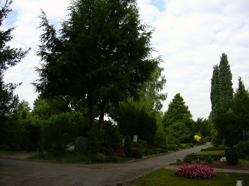 Friedhofsspaziergang