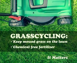 grasscycling....it is a thing now