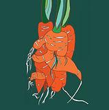 Brindley_Twisted Carrot.jpg