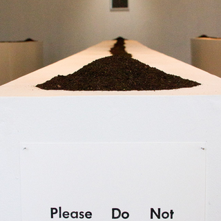 Please Do Not Touch the Art