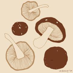 Shiitake Mushrooms