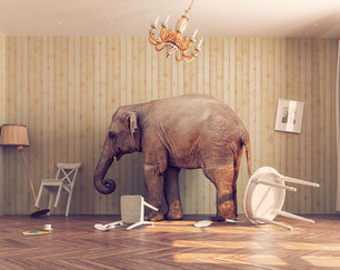 The Poltergeist Elephant in the Room: The call for a paranormal renaissance