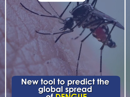 Global Spread of Dengue Can Be Predicted by a New Tool!
