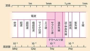 脳波測定実験4.png