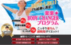 program_image.jpg