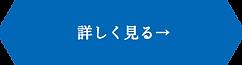 ボタン_詳しく見る.png