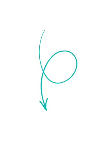 arrow3_left_dgbrandelements_edited.png