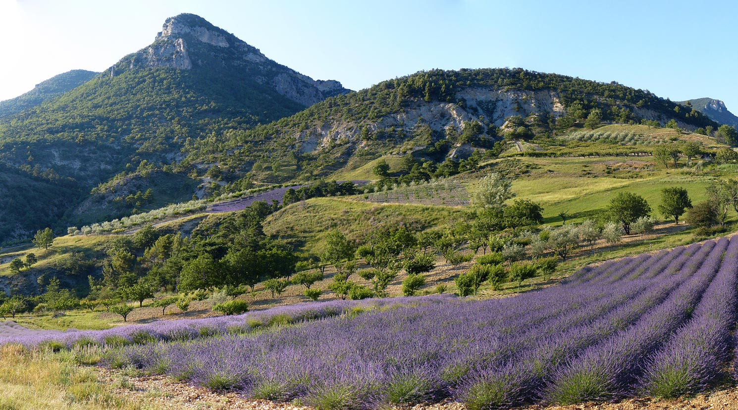 La vallée de Sainte Jalle