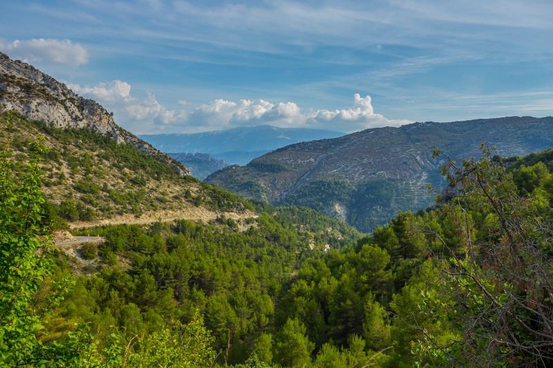 Le vallon de l'Orée et le Mont Ventoux