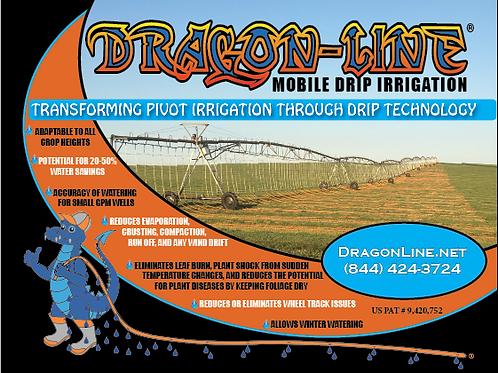Dragon-Line 10' Display