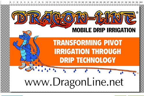 Dragon-Line 2x3 Outdoor Sign
