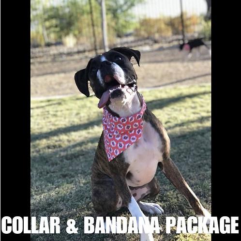 Collar + Bandana Package