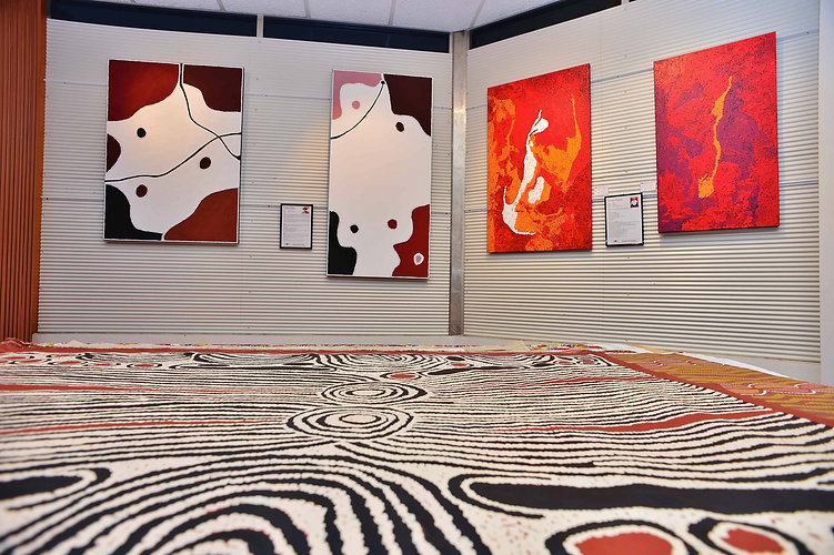 Aboriginal  Art Gallery Darwin Northern Terrritory Australia