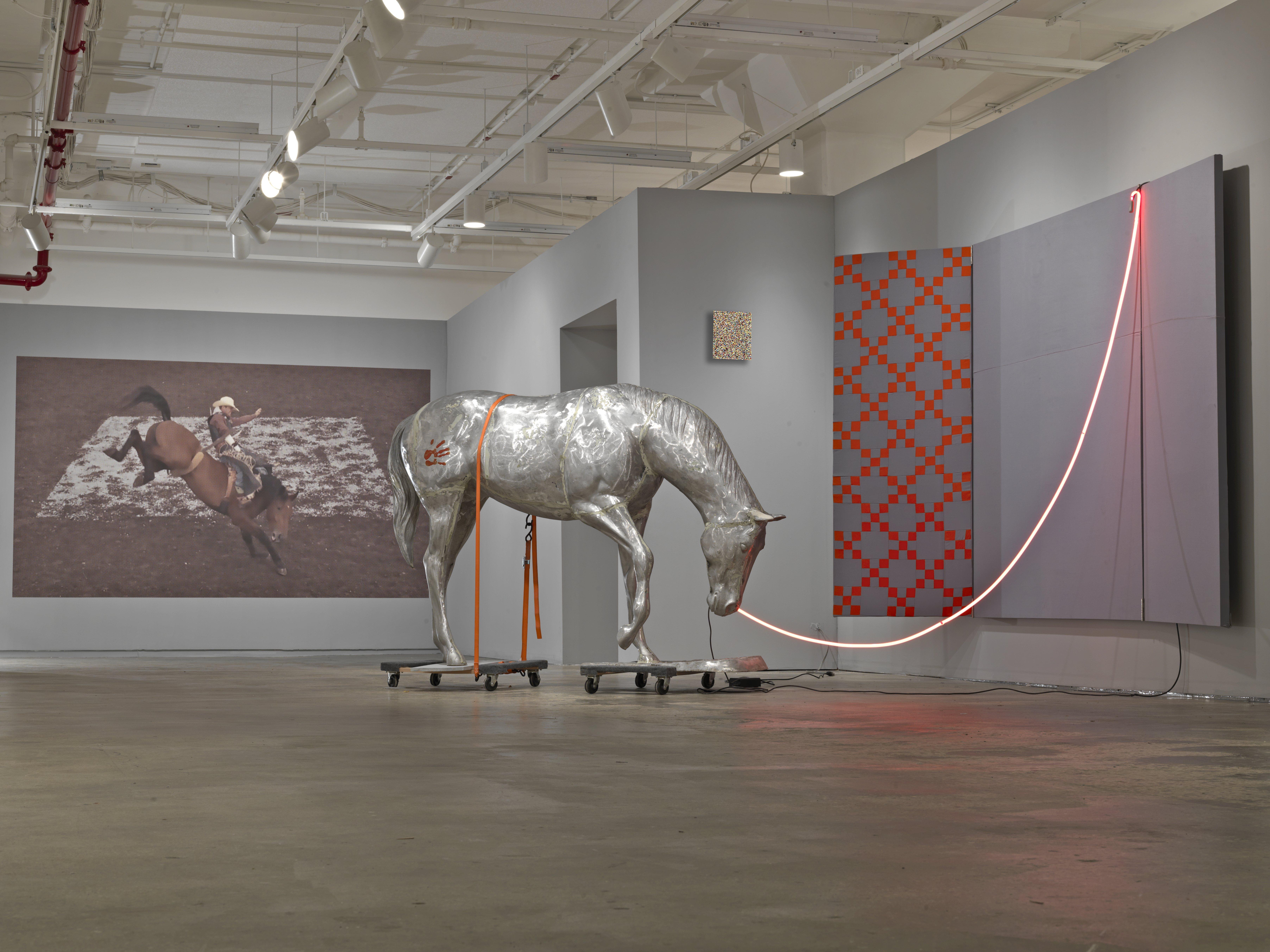 I Like America  (installation view)