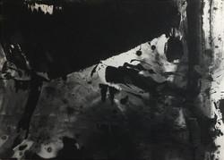 Lan Zhenghui No 5
