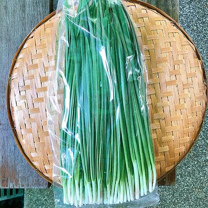 ใบกุ้ยช่ายเขียว 100 กรัม