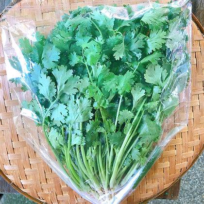 ผักชี (150 กรัม)