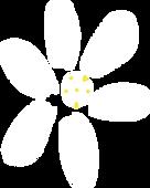 Jasmine Flower.png