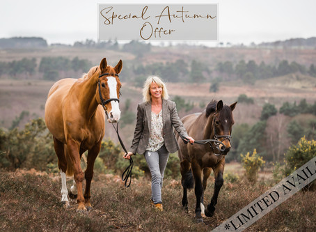 Autumn Equine Photoshoot Offer