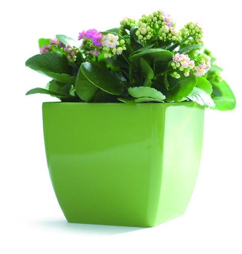 Lilian Small Planter
