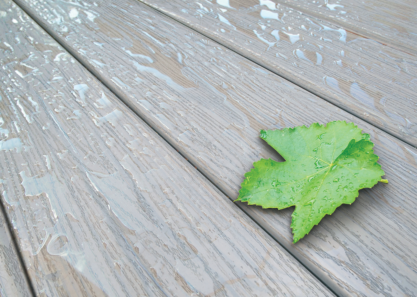 Ashwood-Deck-with-Leaf-and-Water