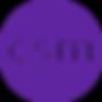 CSM-RGB-purple.png