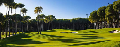 Carya_Golf_Club_02-885x350.jpg