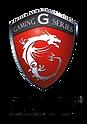 MSi-Gaming.png
