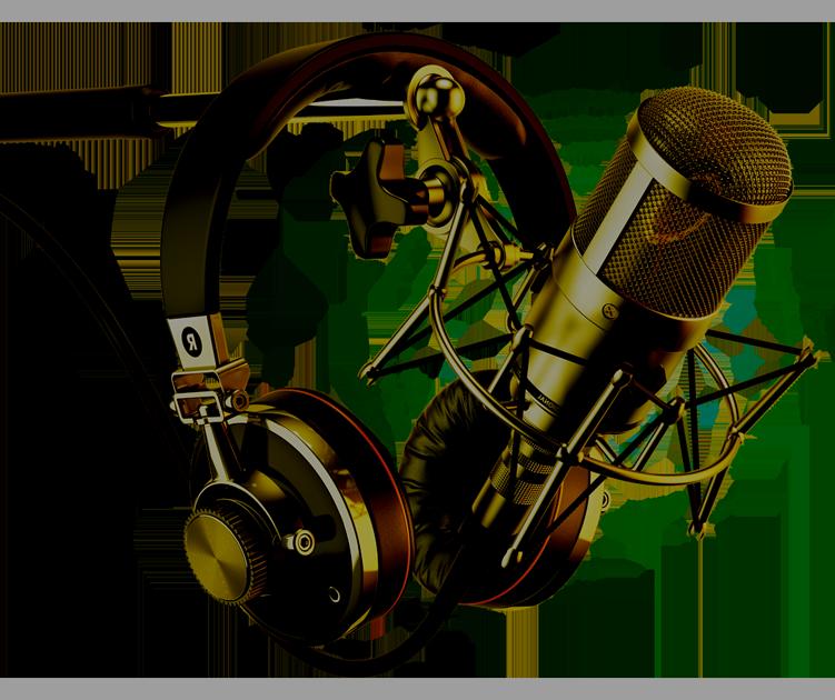 Dim-Radio-Mic-2.png