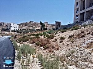 ارض للبيع في صافوط/ مرج البير - تحت قصر الأميرة بسمة ب660م
