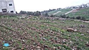 ارض للبيع في السرو - قرب مسجد اسكان طيبة