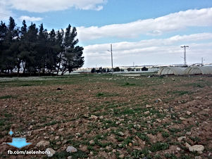 ارض للبيع في القسطل/ الموارس - تبعد 1.5كم عن شارع المطار
