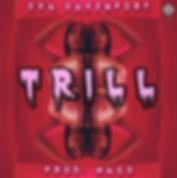 Trill Cover idea 1-2.jpg
