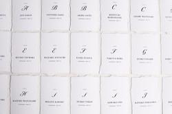 escortcard/paper with deckle edge