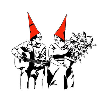 Cartoon Image of The Gender Gnomes