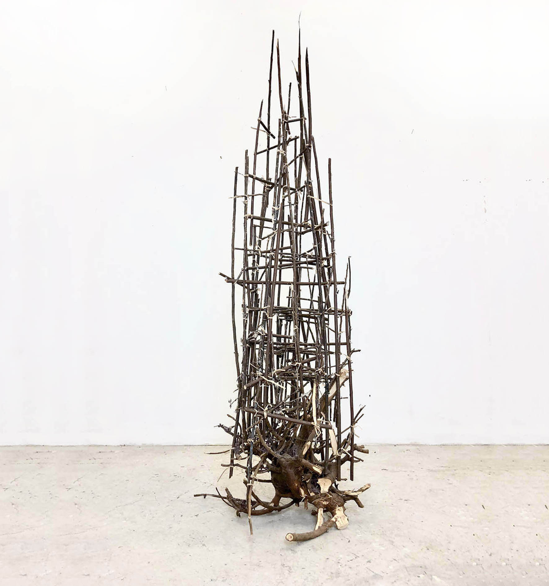 Last Tree 2018, tree roots, branches, wire 170x50x50cm