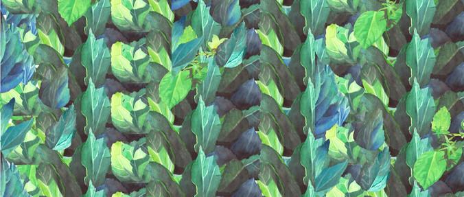 Hibiscus Leaves Fabric