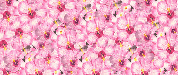 Hibiscus Flowers Fabric