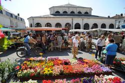 Our local Saturday market