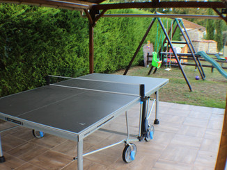 Any one for table tennis?