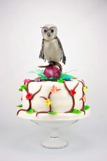 Geburtstagstorte mit Eule aus gezogenem