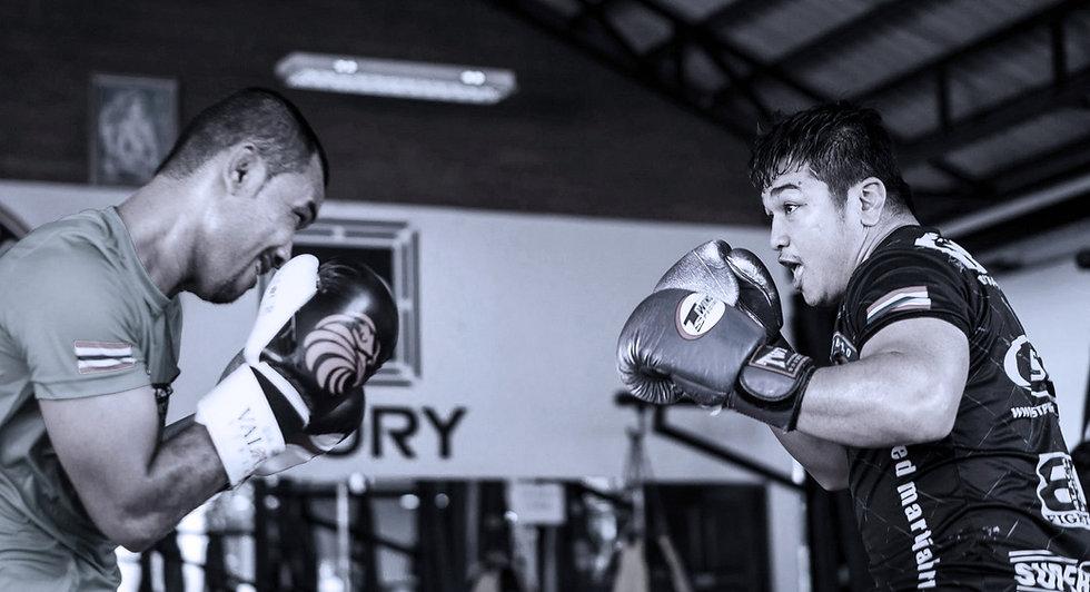 gladius_image_boxing.jpg