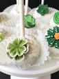 Succulent Cake Pops