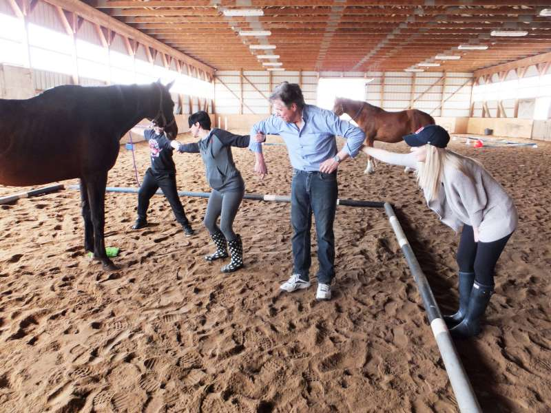 New Horserizons EAL