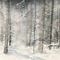 Vinterskog Norrland 80x37cm 2020
